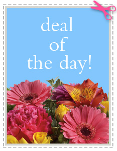 Deal of the Day in Beaumont TX, Blooms by Claybar Floral